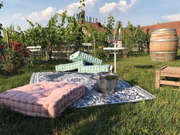 Heurigenhof Bründlmayer im Weingarten